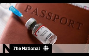 'Vaccine passports' could be necessary for international travel, Trudeau says